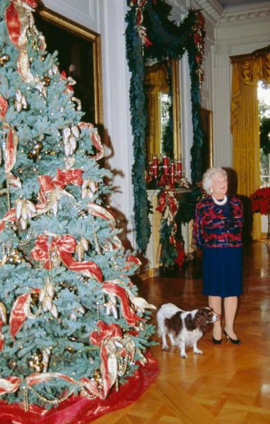 Barbara Bush At Christmas:ニュース(壁紙.com)