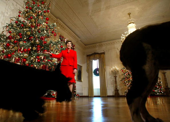Christmas Decoration「Laura Bush Hosts Preview Of White House Christmas Decorations 」:写真・画像(11)[壁紙.com]