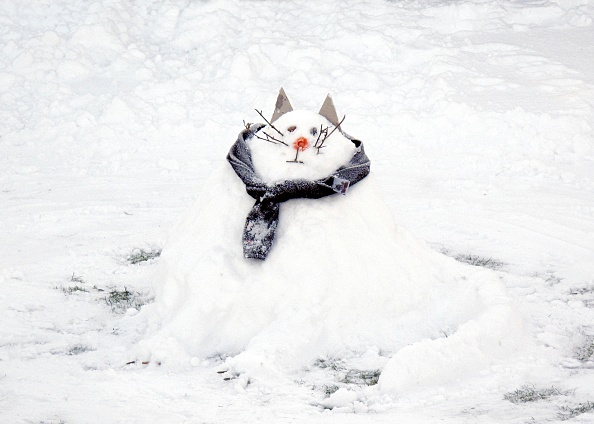 Animal Whisker「Snow Scene With A Snowcat Snowman,」:写真・画像(11)[壁紙.com]