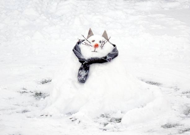 Snow Scene With A Snowcat Snowman,:ニュース(壁紙.com)