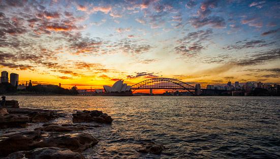 Wave「夕暮れ時のシドニー港」:スマホ壁紙(10)