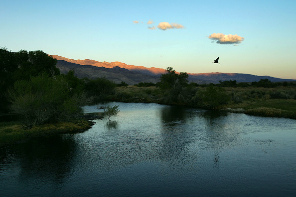 Owens River「Los Angeles Tries To Reverse Desertification Of Owens Lake」:写真・画像(7)[壁紙.com]