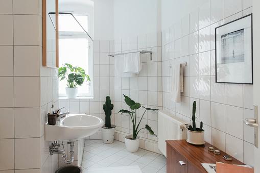 Plant「Minimalist white bathroom」:スマホ壁紙(4)