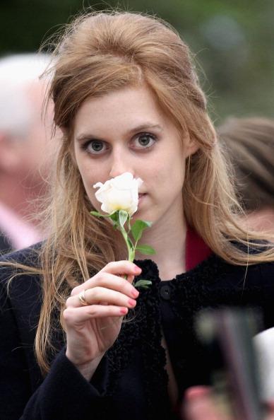 薔薇「Chelsea Flower Show - Press & VIP Day」:写真・画像(2)[壁紙.com]
