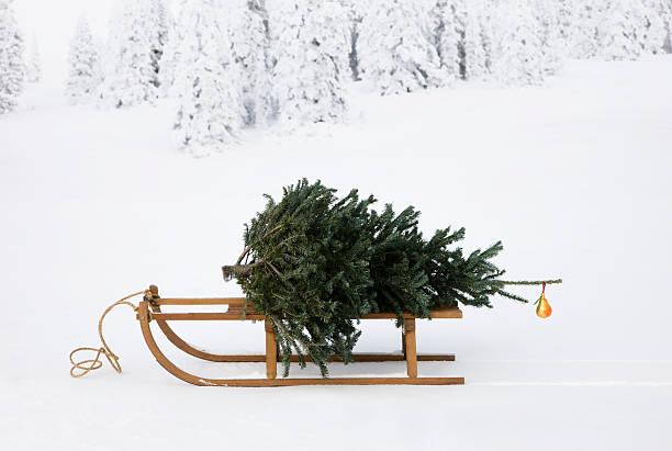 sled with christmas tree:スマホ壁紙(壁紙.com)