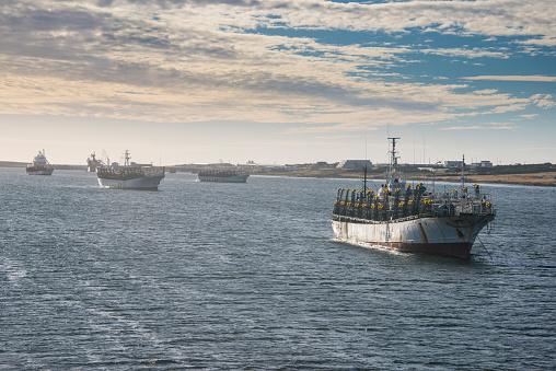 Atlantic Islands「UK, Falkland Islands, Stanley, Fishing trawlers sailing near coast」:スマホ壁紙(12)