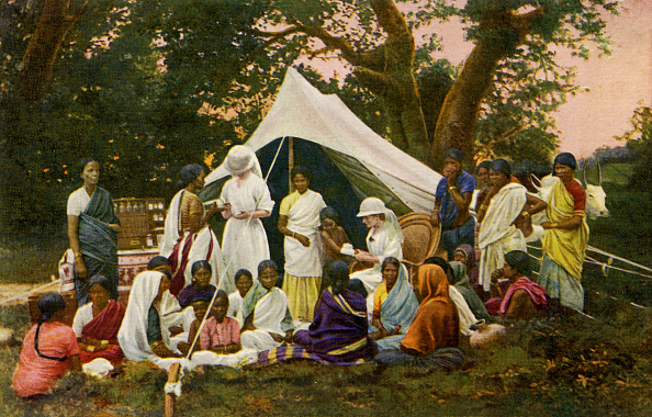 Colony - Group of Animals「Medical tent in India」:写真・画像(16)[壁紙.com]