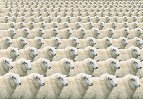 Cloning「Digital composite of flock of identical sheep, full frame」:スマホ壁紙(4)