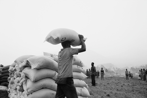 Tom Stoddart Archive「Man carrying supplies for refugees. Goma, Zaire. 1994」:写真・画像(5)[壁紙.com]