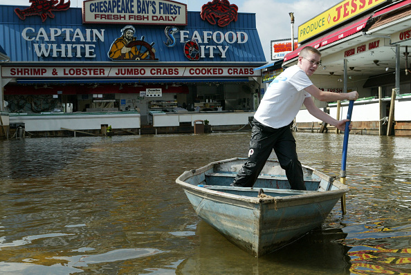 Torrential Rain「Hurricane Isabel Aftermath」:写真・画像(2)[壁紙.com]