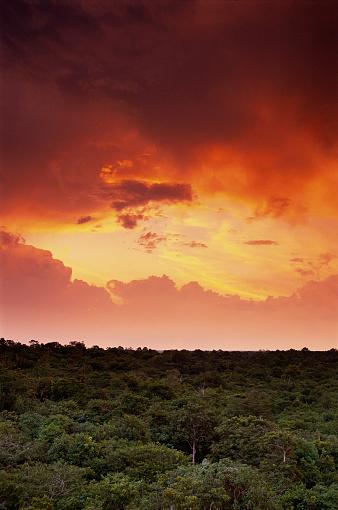 Amazon Rainforest「Storm Clouds Gathering over Amazon Basin」:スマホ壁紙(11)