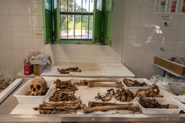 Grave「Bodies Are Exhumed From Franco-era Mass Grave」:写真・画像(9)[壁紙.com]