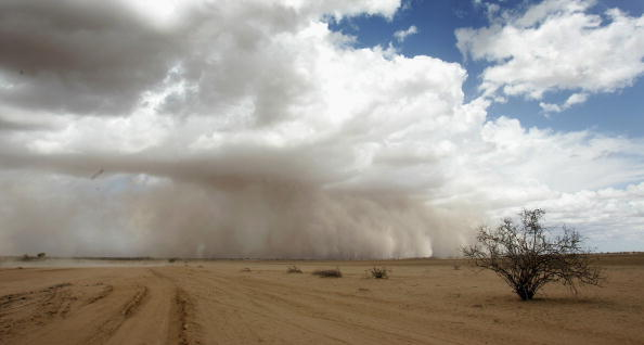 Desert Area「Devastated By Drought, Kenya Needs Help」:写真・画像(7)[壁紙.com]