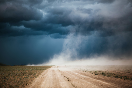 Dust「Dust Storm on a dirt road, Ulgii, Mongolia」:スマホ壁紙(1)
