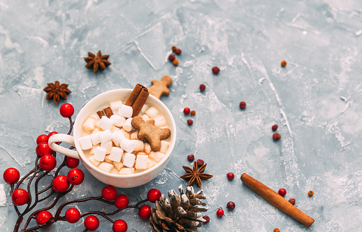 Gingerbread Cookie「Hot chocolate with marshmallows, gingerbread man, Christmas spices and decoration」:スマホ壁紙(0)