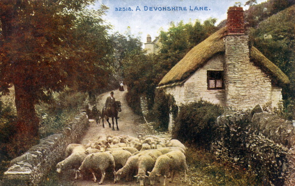 Generic - Description「Postcard depicting a Devonshire lane - generic English country view - with cottage and sheep」:写真・画像(13)[壁紙.com]
