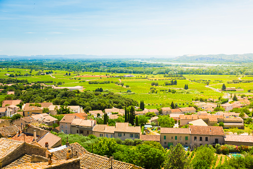 France「View from Chateauneuf-du-Pape」:スマホ壁紙(15)