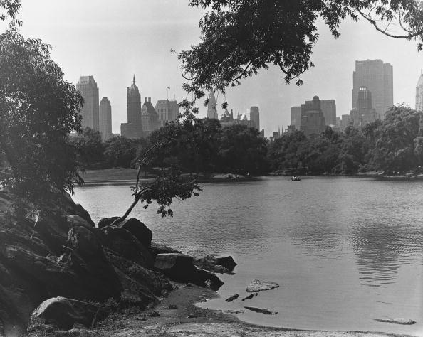 静かな情景「View from Central Park, NYC」:写真・画像(17)[壁紙.com]
