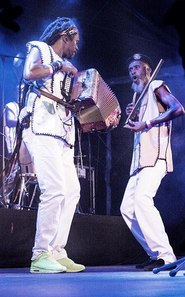 Accordion - Instrument「Ferro Gaita」:写真・画像(11)[壁紙.com]