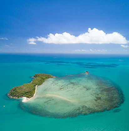 Island「Double Island, Great Barrier Reef, Palm Cove, Queensland, Australia」:スマホ壁紙(17)