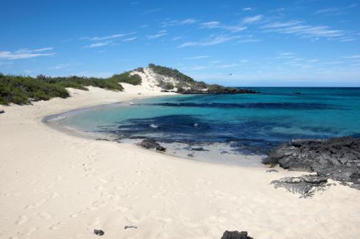 ガラパゴス諸島「ガラパゴスビーチがどこまでも続く白い砂浜の」:スマホ壁紙(10)