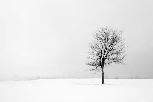 Depression - Sadness「Loneliness」:スマホ壁紙(15)