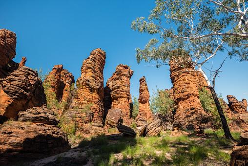 Arafura Sea「Limmen National Park, Northern Territory, Australia.」:スマホ壁紙(13)