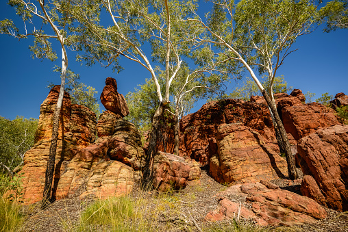 Arafura Sea「Limmen National Park, Northern Territory, Australia.」:スマホ壁紙(11)