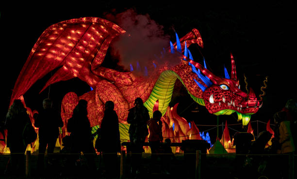 Dragon「The Festival Of Light Is Unveiled At Longleat」:写真・画像(6)[壁紙.com]