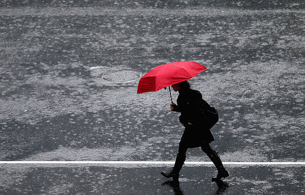 Wet Weather Continues In Auckland:ニュース(壁紙.com)