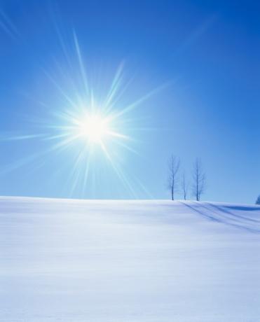 星空「The Sun Shining Over Bare Trees in a Snowy Field. Biei, Hokkaido, Japan」:スマホ壁紙(15)
