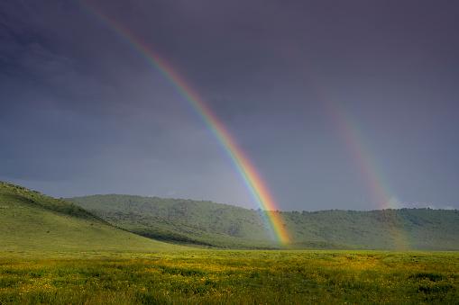 Double Rainbow「Rainbow in Ngorongoro Crater」:スマホ壁紙(13)