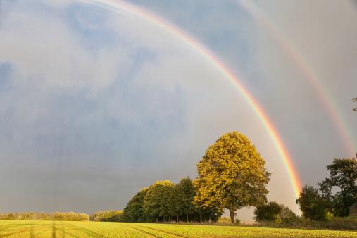 Rainbow Arch「rainbow in rural setting」:スマホ壁紙(2)