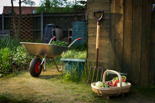 Norfolk - England「Allotment and gardening tools」:スマホ壁紙(3)