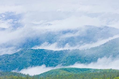 Fog「Fog over landscape, Norikura Plateau, Matsumoto, Nagano Prefecture, Japan」:スマホ壁紙(5)