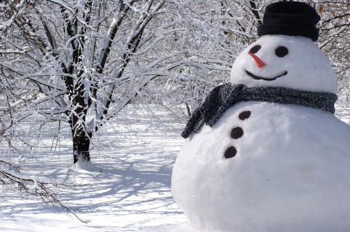 雪が降る「最高のスノーマンご自宅で」:スマホ壁紙(7)