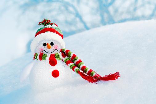 Snowdrift「Snowman at frozen forest」:スマホ壁紙(3)