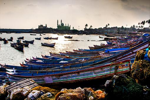 アラビア海「Coastal life 3」:スマホ壁紙(15)