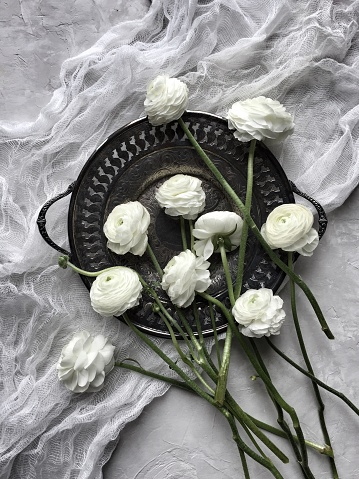 Muslin Fabric「White ranunculus flowers on a pewter dish and muslin」:スマホ壁紙(4)