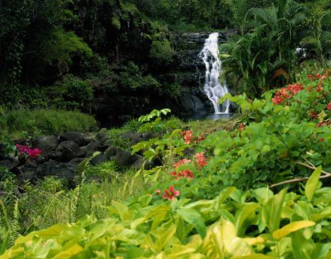 オアフ島「Waimea Falls, Oahu, Hawaii」:スマホ壁紙(3)