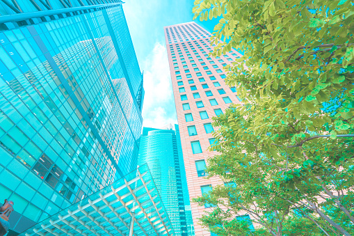 Green Color「Scenery of the business district in Tokyo」:スマホ壁紙(1)