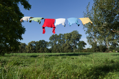 Dry Cleaned「Clothesline with multi colored t-shirts between trees (XXXL)」:スマホ壁紙(15)