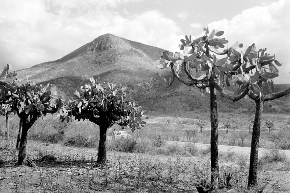 Arid Climate「From Cap-Haitien To Port-Au-Prince」:写真・画像(15)[壁紙.com]