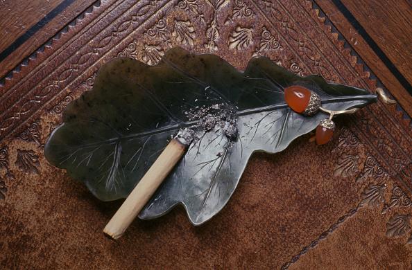 葉・植物「Fabergé Ashtray」:写真・画像(8)[壁紙.com]