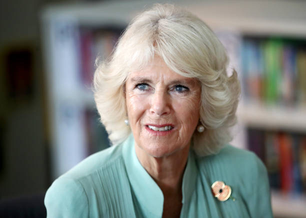Camilla - Duchess of Cornwall「The Prince Of Wales & Duchess Of Cornwall Visit Singapore, Malaysia, Brunei And India - Day 5」:写真・画像(5)[壁紙.com]