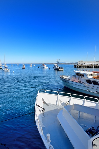 City of Monterey - California「Monterey, sightseeing boat ride to see whales along the west coast.」:スマホ壁紙(9)