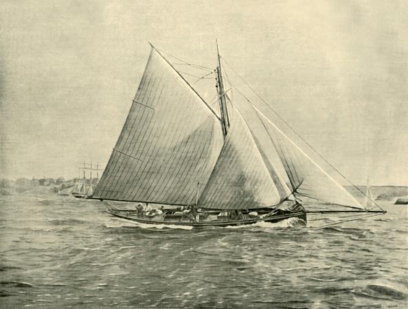 Vitality「Cruising In Port Jackson」:写真・画像(11)[壁紙.com]