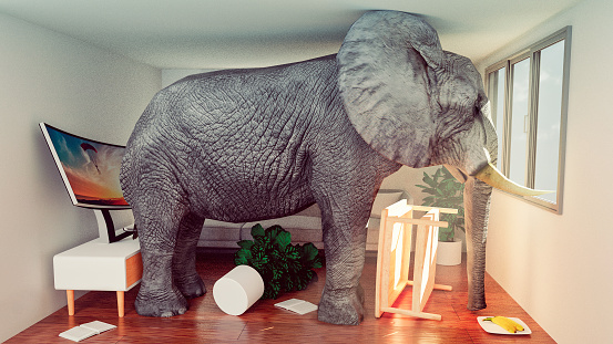 Digital Composite「Concept image of elephant stuck in a small living room and looking to get out」:スマホ壁紙(5)