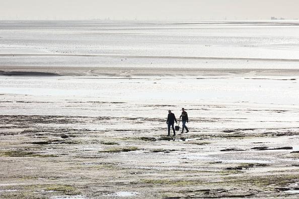 軟体動物「Cockle Pickers At Low Tide」:写真・画像(2)[壁紙.com]