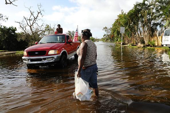 Naples - Florida「Powerful Hurricane Irma Slams Into Florida」:写真・画像(6)[壁紙.com]